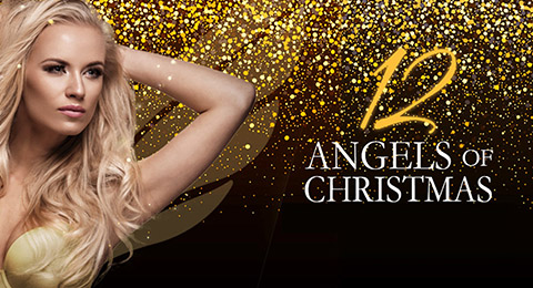 12 Angels of Christmas! Image